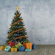Portland Area Christmas Tree Farms To Visit This Season